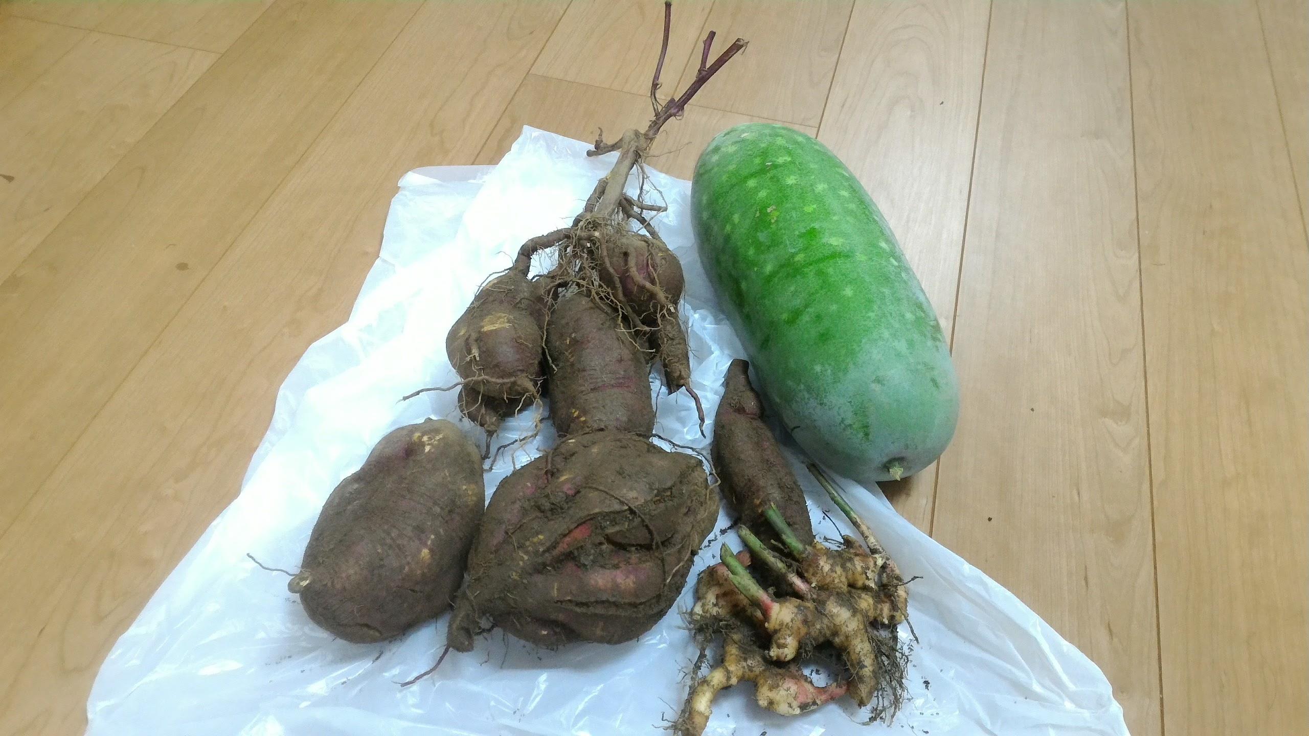 加賀屋農園のさつまいも、冬瓜・生姜をご寄付いただきました♪